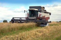 在一个领域的五谷收割机农业转台式组合在夏日 免版税库存照片