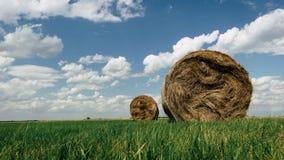 在一个领域的干草捆在一个多云夏日 免版税图库摄影