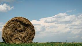 在一个领域的干草捆在一个多云夏日 免版税库存照片