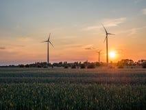 在一个领域的电风车在日落期间 图库摄影