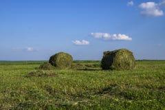 在一个领域的秸杆大包在前景 干草收获  在天空的云彩 农业农场 与培养的领域的小山和 免版税图库摄影