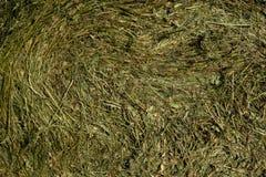 在一个领域的秸杆大包在前景 干草收获  在天空的云彩 农业农场 与培养的领域的小山和 免版税库存图片