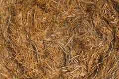 在一个领域的被堆的干草捆反对蓝天 图库摄影