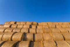 在一个领域的被堆的干草捆反对蓝天 库存照片