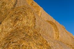 在一个领域的被堆的干草捆反对蓝天 免版税图库摄影