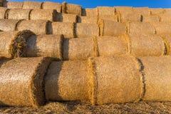 在一个领域的被堆的干草捆反对蓝天 免版税库存图片