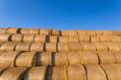 在一个领域的被堆的干草捆反对蓝天 免版税库存照片