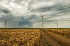 在一个领域的风车用麦子 免版税库存图片