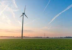 在一个领域的风轮机用甜菜 早晨太阳上升 库存图片