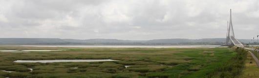 在一个风景图象的Pont de Normandie桥梁与河滩沼泽 免版税图库摄影