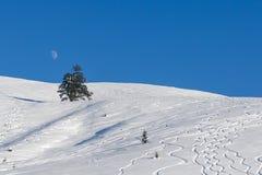 在一个高山倾斜的滑雪轨道 免版税库存图片