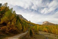 在一个高山谷的秋天 免版税库存照片