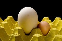 在一个鸡鸡蛋旁边的大大小鹅蛋在包裹 库存图片