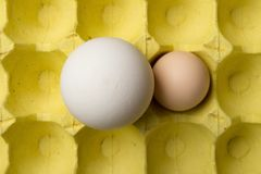 在一个鸡鸡蛋旁边的顶视图大大小鹅蛋在包裹 免版税图库摄影