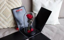 在一个黑匣子的红色玫瑰作为礼物,耐久在烧瓶上升了 保留 免版税库存照片