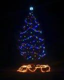 在一个黑暗的晚上的一棵室外圣诞树 免版税库存图片