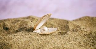 在一个贝壳的珍珠在海滩 免版税库存图片