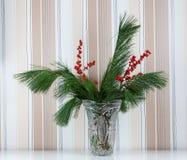 在一个水晶花瓶的杉木分支 免版税库存照片