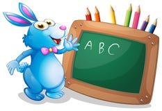 在一个黑板前面的一个兔宝宝有在后面的铅笔的 免版税库存图片