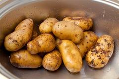 在一个水槽的土豆在厨房里 图库摄影