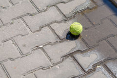 在一个水池的网球在铺路板在一个晴天 免版税库存图片