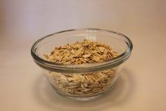 在一个玻璃容器的燕麦粥燕麦 免版税图库摄影