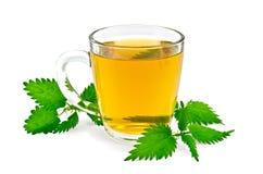 在一个杯子的清凉茶用荨麻 免版税库存照片