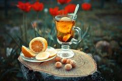 在一个玻璃杯子的茶用柠檬和薄菏在lwooden浮出水面 免版税图库摄影