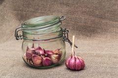 在一个玻璃瓶子的大蒜 图库摄影