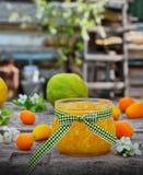 在一个玻璃瓶子的橙皮马末兰果酱用新鲜水果 免版税库存图片
