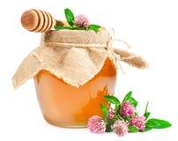 在一个玻璃瓶子的甜蜂蜜有三叶草的 免版税库存图片