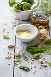 在一个玻璃瓶子的菠菜pesto,装饰:菠菜离开,松果,乳酪巴马干酪,大蒜,橄榄油 免版税库存图片