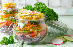 在一个玻璃瓶子的素食彩虹沙拉夏天野餐的 库存图片