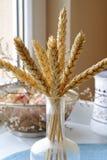 在一个玻璃瓶的干麦子 免版税库存照片