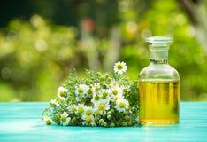 在一个玻璃瓶的春黄菊精油 一束春黄菊 温泉概念 库存照片