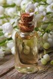 在一个玻璃瓶的精华铃兰开花 库存照片
