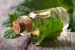 在一个玻璃瓶的芳香油香蜂草在老桌上 库存图片
