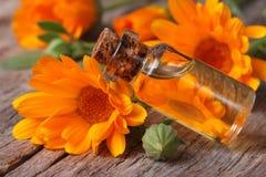 在一个玻璃瓶的金盏草油在水平一张老的桌上 库存图片