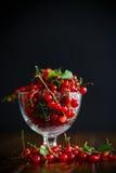 在一个玻璃花瓶的成熟红浆果 免版税库存照片