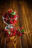在一个玻璃花瓶的成熟红浆果 免版税库存图片