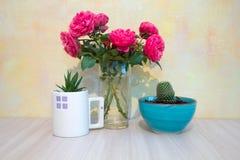 在一个玻璃花瓶的桃红色玫瑰,多汁在一个蓝色陶瓷碗的一个白色玻璃仙人掌 免版税图库摄影