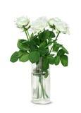 在一个玻璃花瓶的白玫瑰花束 库存图片