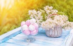 在一个玻璃花瓶的白色和桃红色蛋白软糖有精美白色丁香篮子的在落日的光芒的 水平的fra 库存图片
