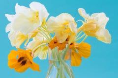 在一个玻璃花瓶的金莲花花 美丽的花束 浪漫 免版税库存图片