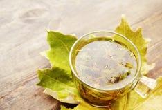 在一个玻璃透明杯子的清凉茶在一张木桌上的秋叶 免版税库存图片