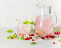 在一个玻璃水罐和玻璃的戒毒所水 莓果和石灰、红色和绿色 新鲜的叶子薄菏 复制空间 免版税库存图片