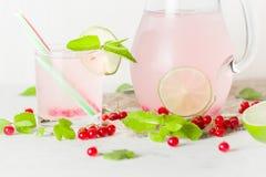 在一个玻璃水罐和玻璃的戒毒所水 莓果和石灰、红色和绿色 新鲜的叶子薄菏 复制空间 库存照片