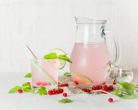 在一个玻璃水罐和玻璃的戒毒所水 莓果和石灰、红色和绿色 新鲜的叶子薄菏 复制空间 库存图片