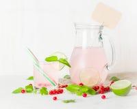 在一个玻璃水罐和玻璃的戒毒所水 莓果和石灰、红色和绿色 新鲜的叶子薄菏 复制空间 免版税库存照片
