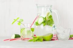 在一个玻璃水罐和玻璃的戒毒所水 莓果和石灰、红色和绿色 新鲜的叶子薄菏 库存照片